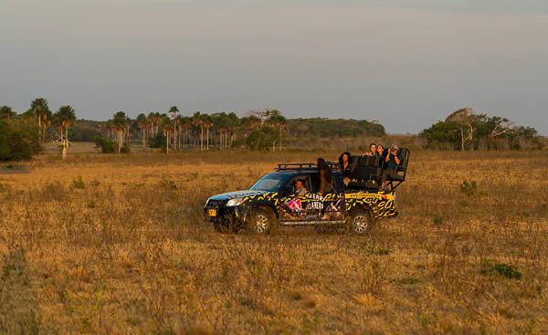 Casanare Los Llanos-Colombia-Reservas Lagunazo y Buenaventura-@MathieuPerrot-Bohringer-52-1
