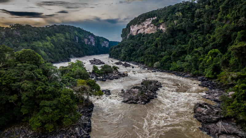 Araracuara Caqueta Colombia @MathieuPerrot Bohringer 3