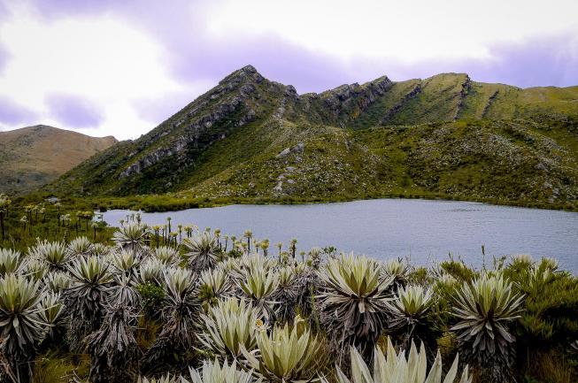 Parc Chingaza : Guide De Voyage
