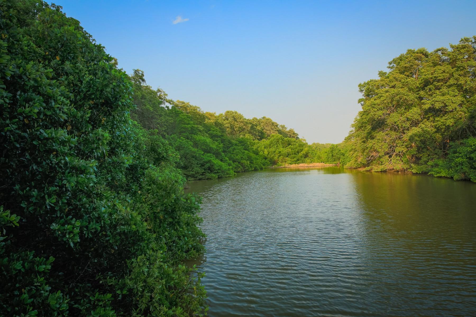 parque salamanca colombia © Tristan Quevilly