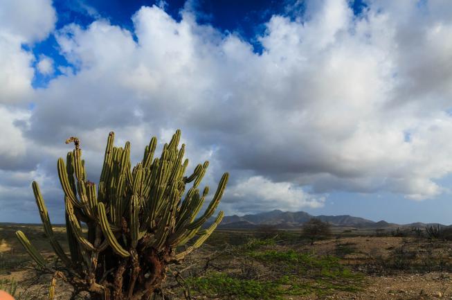 Mocoa and Sibundoy: Travel Guide